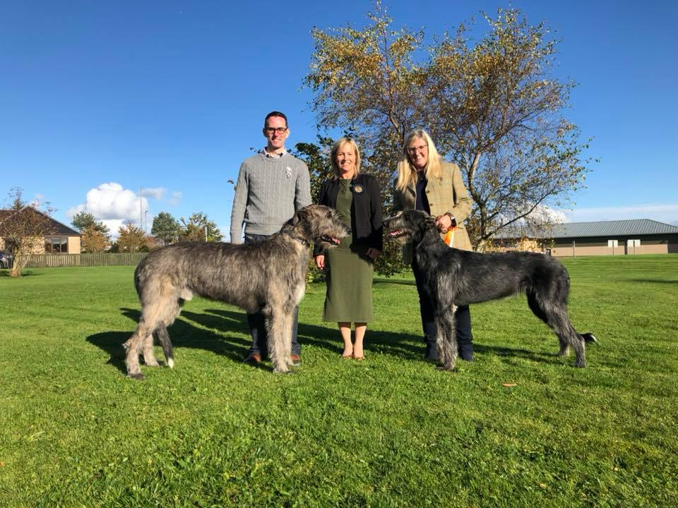 Best of Breed, Broughadowey Raiden at Torrfionn, with judge Mandy Addington and Best Puppy in Breed Hazianne Partial Eclipse