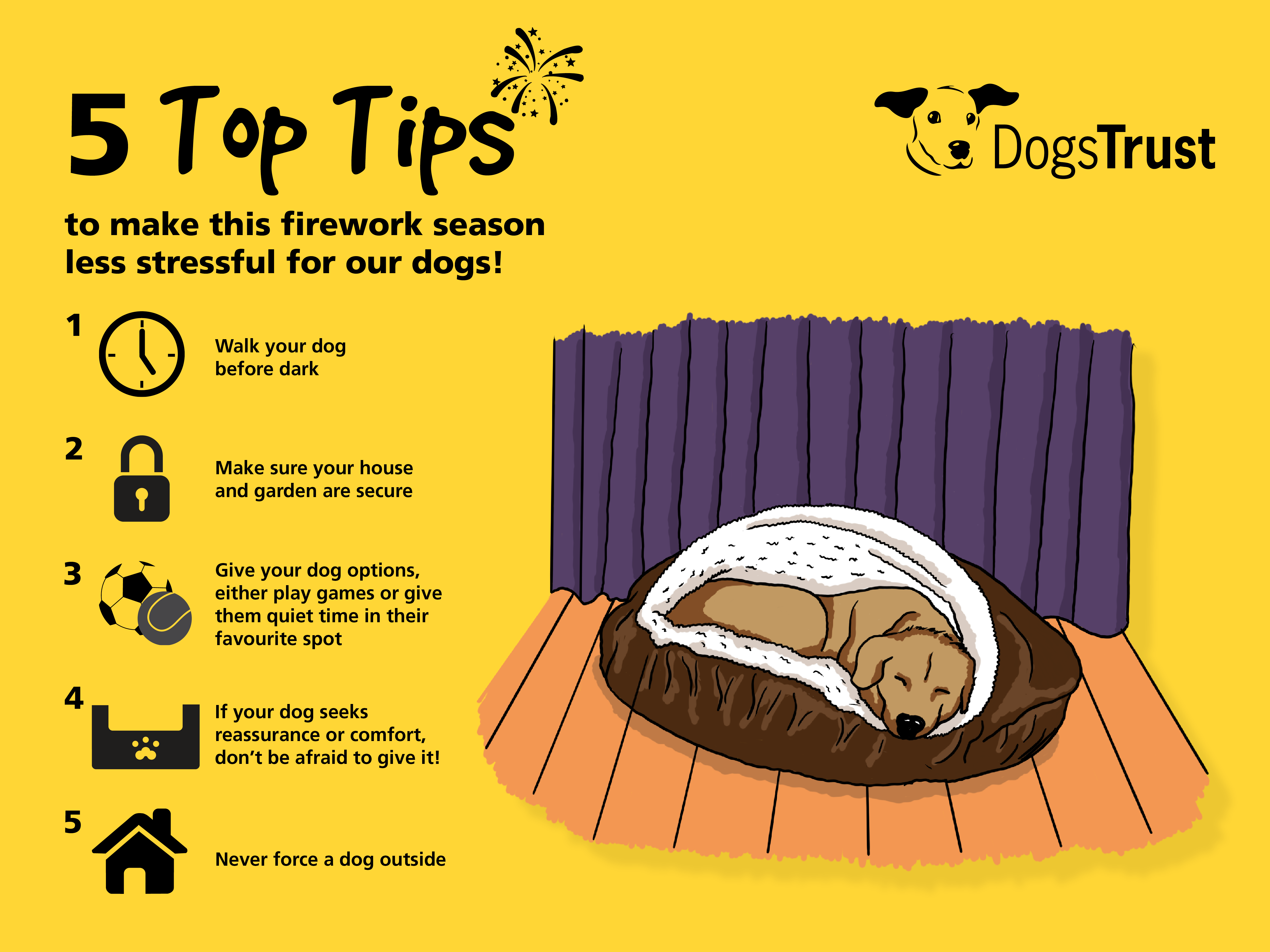 Firework Dog Code Top Tips